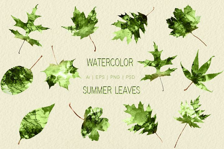 Watercolor Summer Leaves Graphics