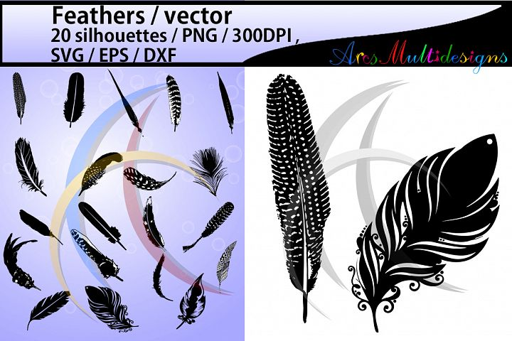 feather silhouette SVG / Feathers / feather clipart / layer base svg format available / 300 dpi / vector files / EPS / PNG /Dxf sets