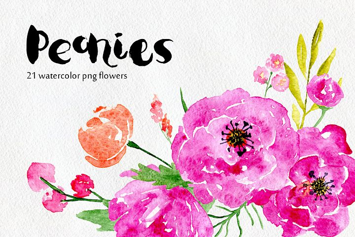 Watercolor flowers peony, floral set