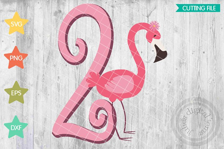 Flamingo birthday, Pink birthday, 2nd Birthday SVG
