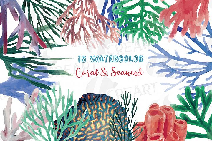 Watercolor Coral Reef clip art pack, corals and seaweed png