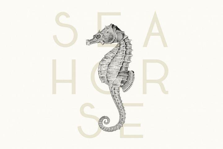 Seafarer | A Beachy Art Deco Font example image 3