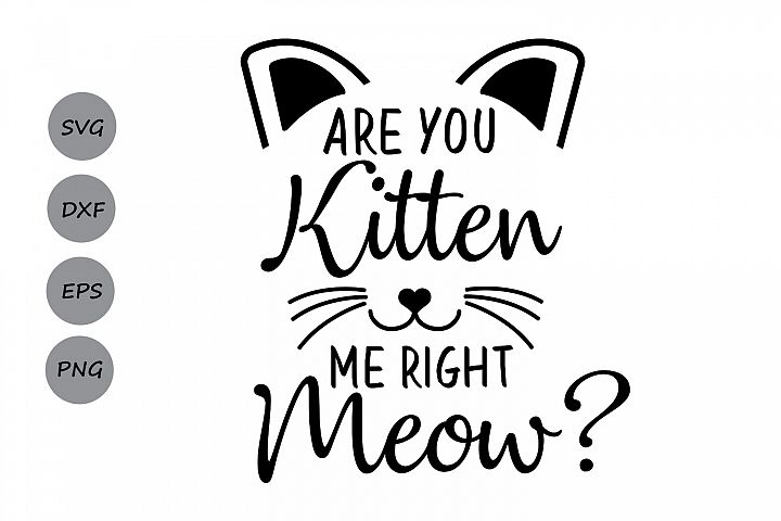 Are you kitten me right meow? SVG, cat svg, kitten svg, Are you kitten me svg, silhouette files, cricut cut files, svg, dxf, eps, png.