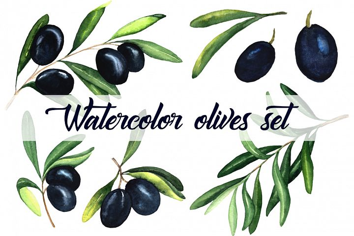 Watercolor olives set