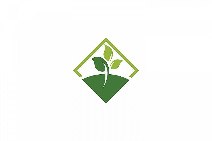 Square Green Leaf Logo