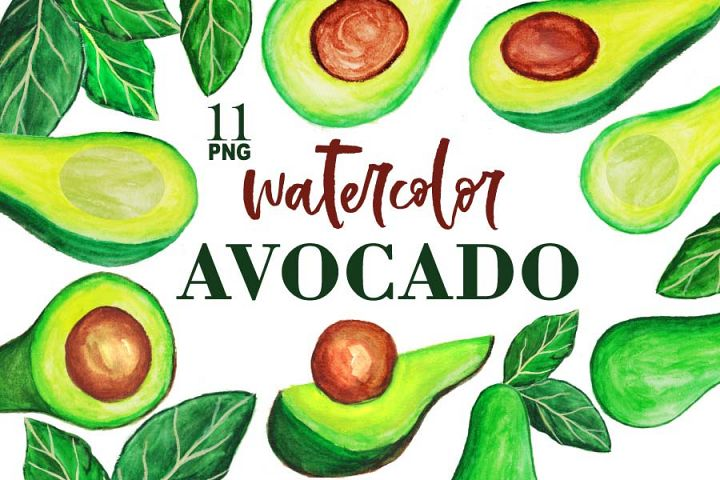 Avocado watercolor Clipart set transparent background