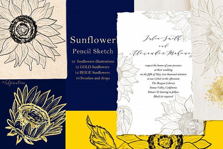 Sunflowers. Fine art. Sketch Outline