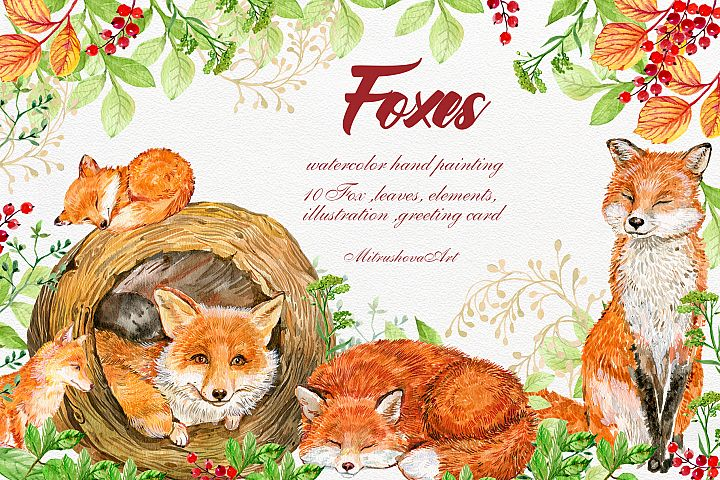Foxes.Animals Clip art .Watercolor painting. baby Fox,