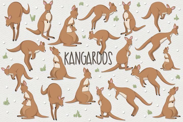 Kangaroos example