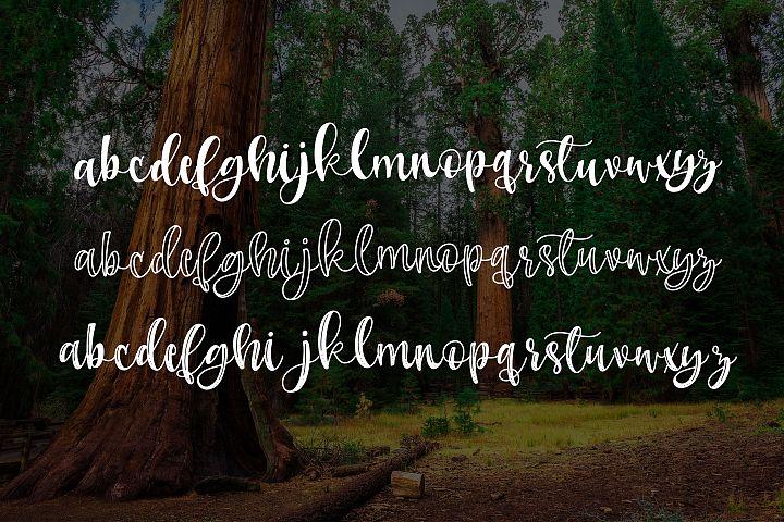 Sherman Trio - Free Font of The Week Design0