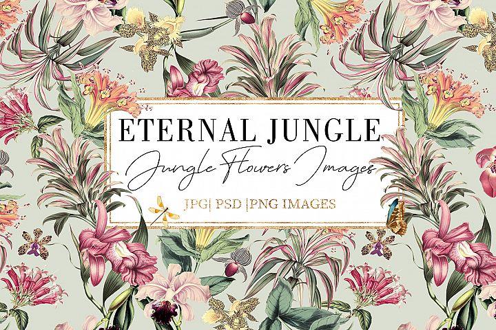 Eternal Jungle