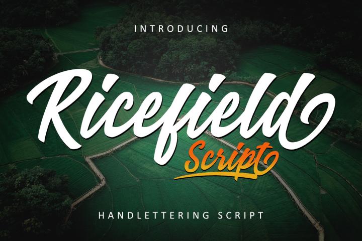 Ricefield Script