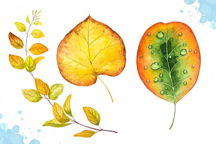 Autumn leaves. Watercolor set. example image 6
