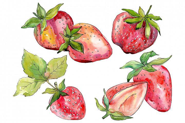 Strawberry Alba watercolor png