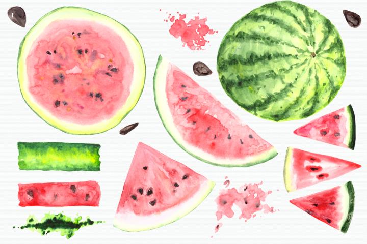 Watercolor Watermelon Clip Art Set