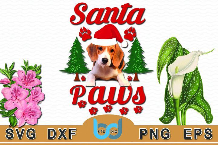 Santa Paws Quotes SVG Tshirt Design.