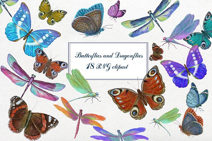 Butterfly & dragonflies Clipart 18 PNG collection