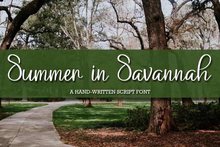 Summer in Savannah - A Hand-Written Script Font example image 1