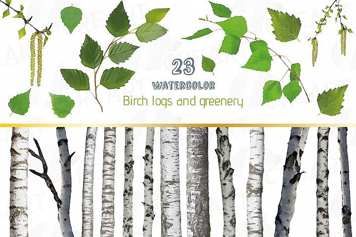 Watercolor Birch Tree Clip art, leaves greenery, trunk decor