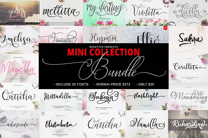 The MINI COLLECTION Bundle
