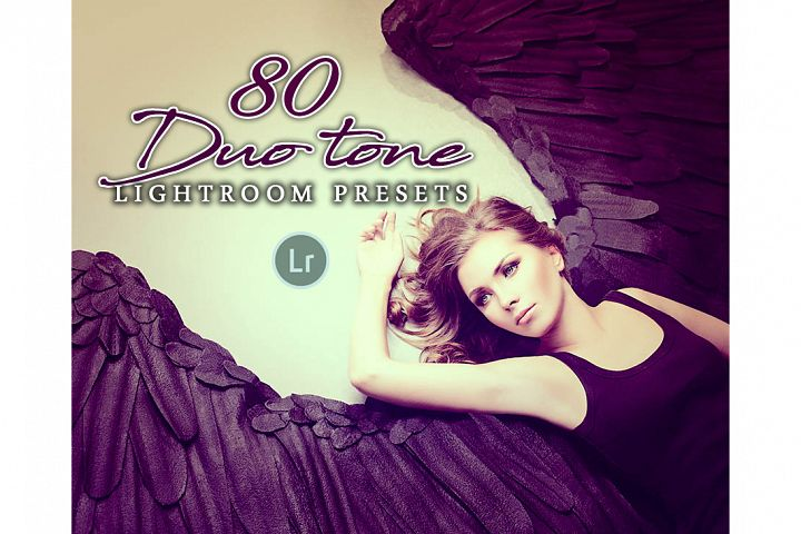 Duotone Lightroom Lightroom Presets