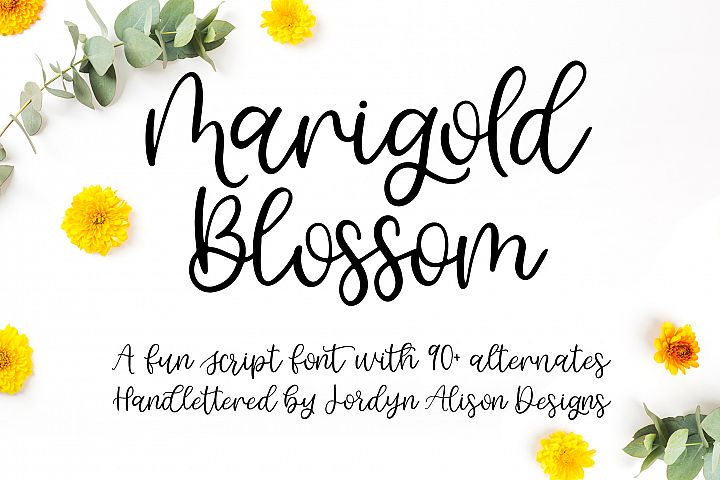 Marigold Blossom, Hand Lettered Script Font
