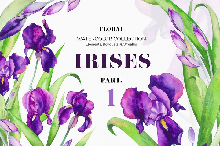 Irises. Watercolor Floral Set. Part1