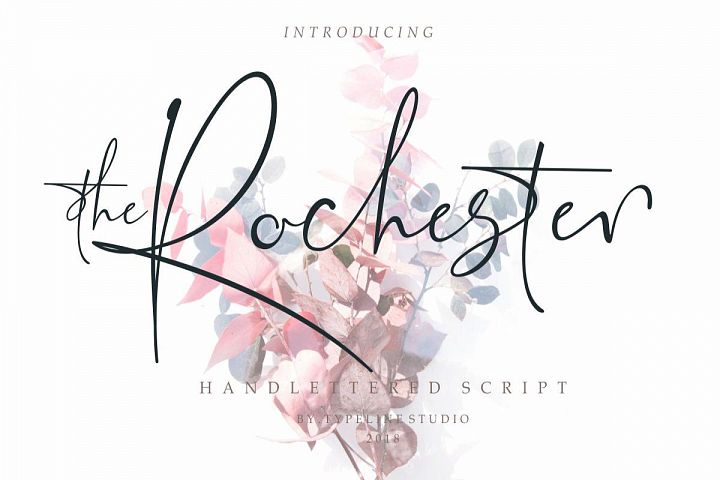 the Rochester // Beautiful Signature