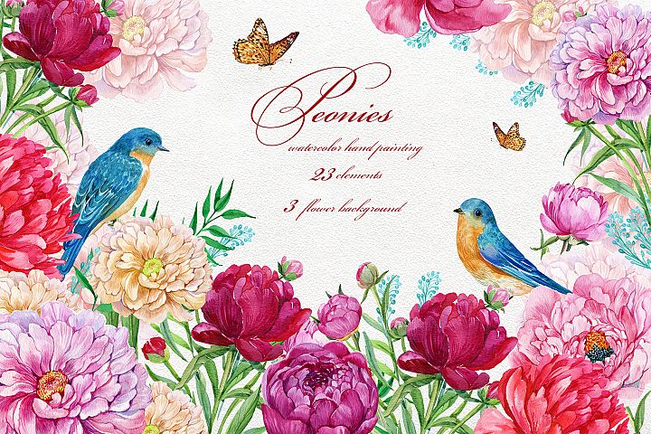 Peonies Flowers Watercolor.Wedding Clipart.Hand Painted.