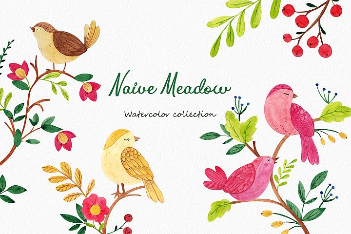 Naive Meadow. Watercolor collections