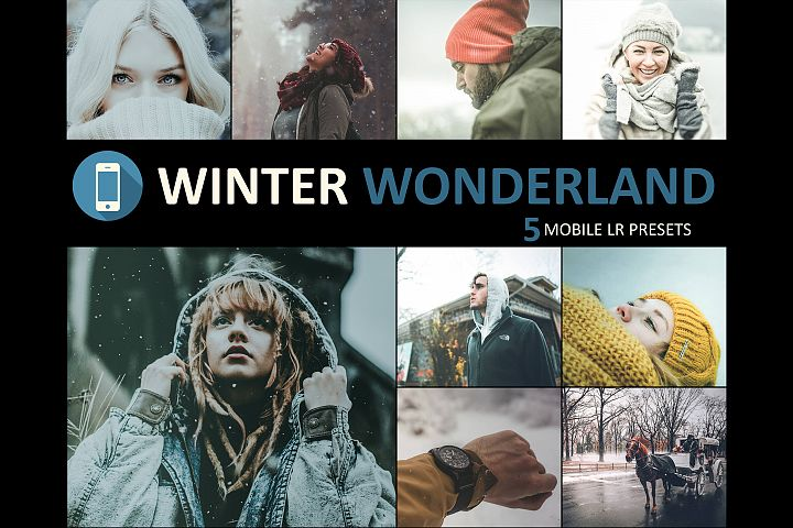 Neo Winter Wonderland mobile lightroom presets