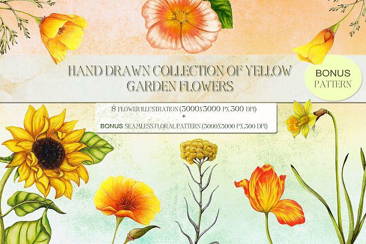 Hand drawn garden flowers setbonus,Bonus