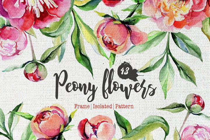 Peony flowers PNG watercolor set