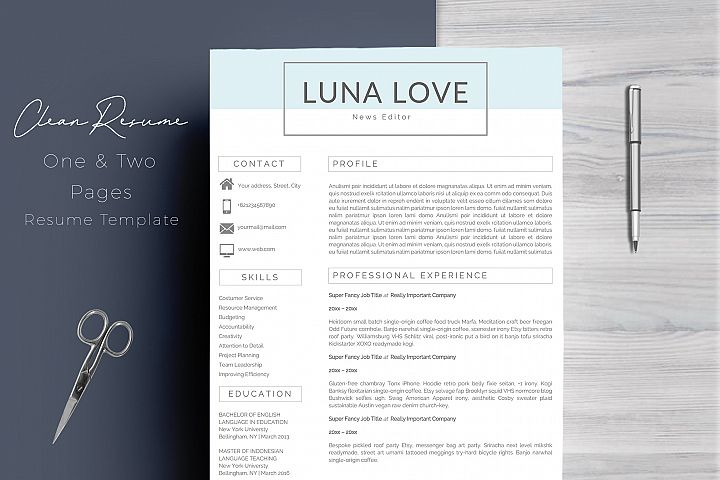 Professional 4 Pages Resume Template