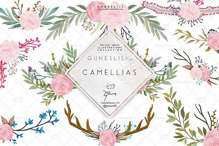 Camellias Clipart Floral Graphics