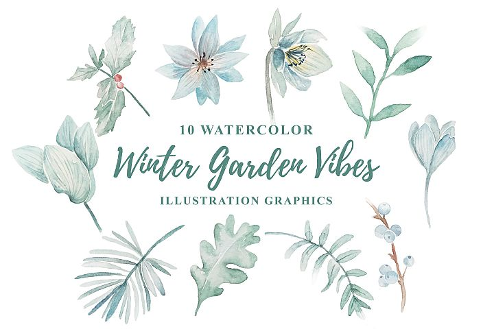10 Watercolor Winter Garden Vibes Illustration Graphics