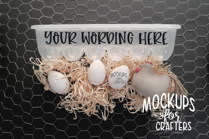 Dollar Tree Egg Holder / Egg Carton MOCK-UP