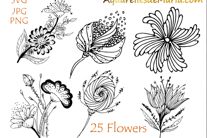 Flower Hand Drawn Vector Silhouette