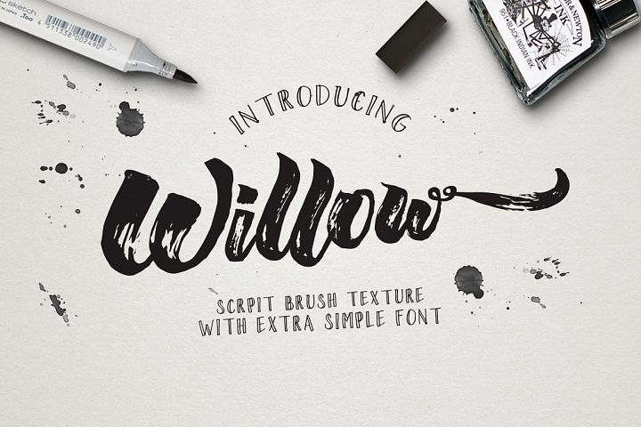 Wiilow Brush & Extra