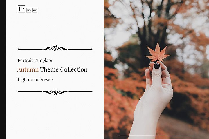 150 Autumn Theme Color Grading Premium Lightroom Presets