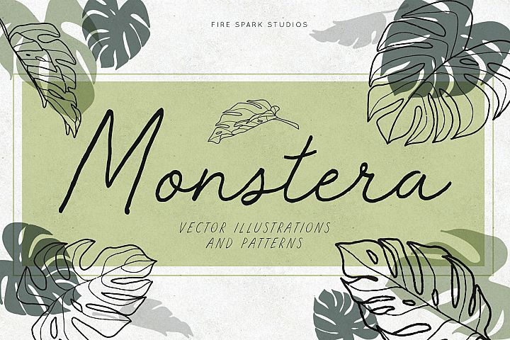 Monstera Vector Illustrations & Patterns