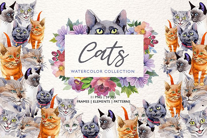 Cats Watercolor png