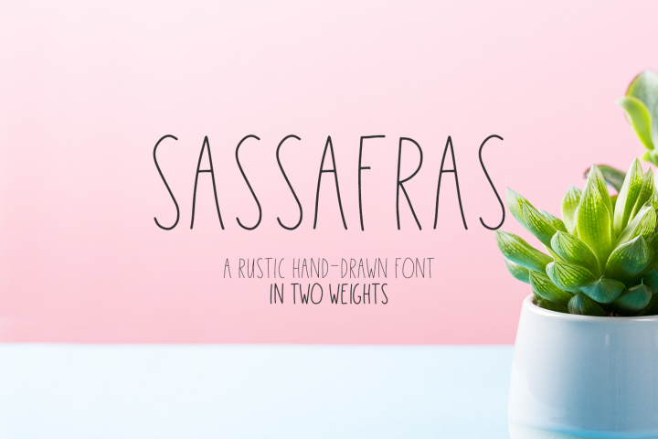 Sassafras Sans - Regular and Bold