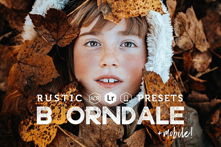 Bjorndale Presets for Lightroom & ACR, Desktop & Mobile