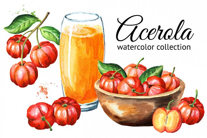 Acerola. Watercolor collection