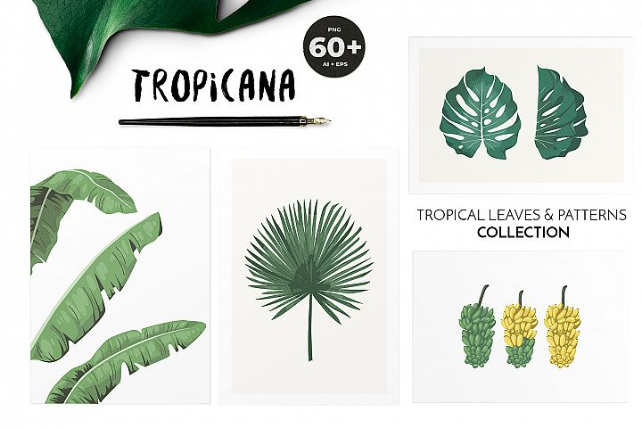 TROPICANA tropical leaves & patterns collection
