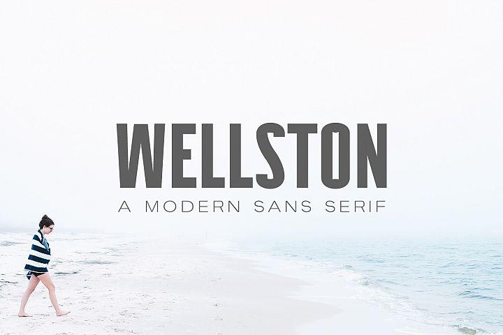 Wellston Modern Sans Serif Font Family