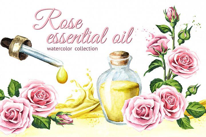 Rose. Essential oil