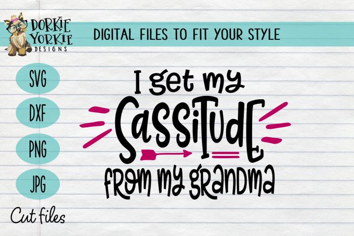 I get my sassitude from my Grandma - sassy, attitude, funny,