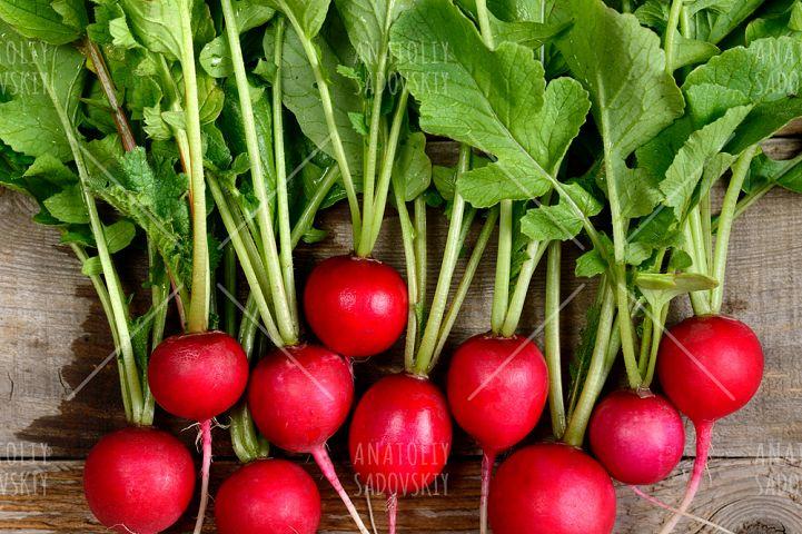 Fresh radishes on wooden background